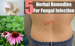 herbal supplement for fungus picture 10
