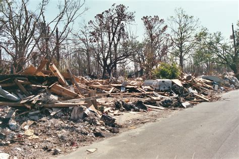 from debris picture 13