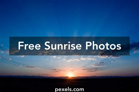 free online business picture 9