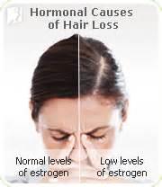 estrogen testosterone hair loss picture 6
