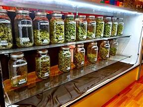 weed smoke shop picture 1
