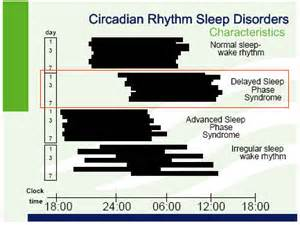 circadian rhythm sleep disorders picture 10