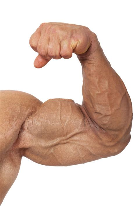 cancer of the muscle picture 6