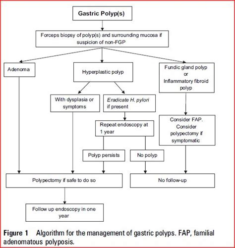 algorithm for gall bladder polyps picture 1