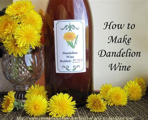 dandelion wine picture 6