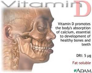 vitamins with similar effects as opioids picture 10
