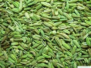 fennel seed picture 9