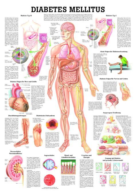 diabetis diet picture 3