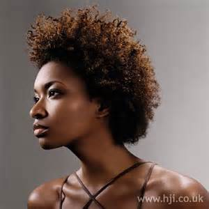 afro american hair styles picture 14