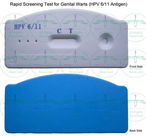 pap smears test genital warts picture 2