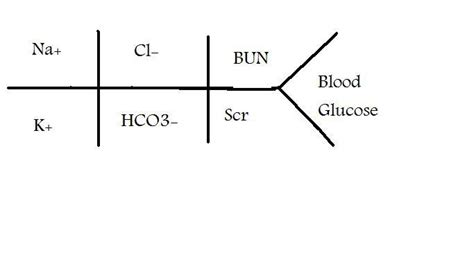 chem panel liver function picture 1