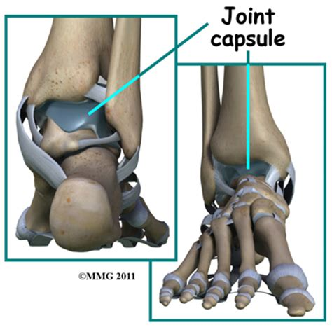 joint capsular sprain foot picture 1