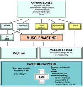 muscle strength definition picture 1