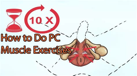 flhow can i locate where my pc muscle picture 1
