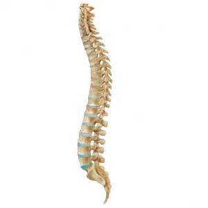 chronic pain picture 9