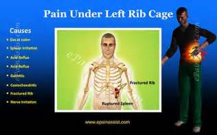 pain under lt rib,upper back pain constipation picture 2