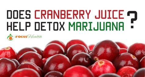 does labcorp test for herbal detox picture 12