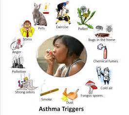 cigarette smoke allergy picture 13