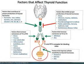 hypothyroid affect on heart picture 1