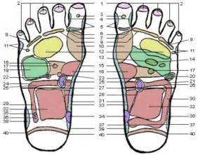 acupuncture for thyroid picture 11