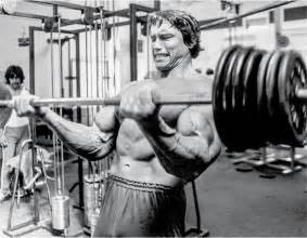 arnolds muscle pictures picture 3