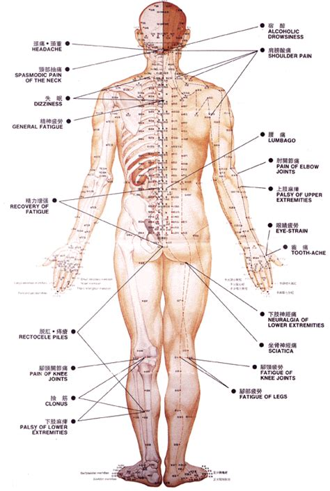 acupuncture for erectile dysfunction picture 7