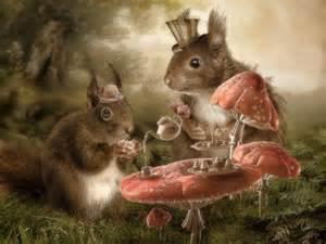 tea tree squirrel picture 5