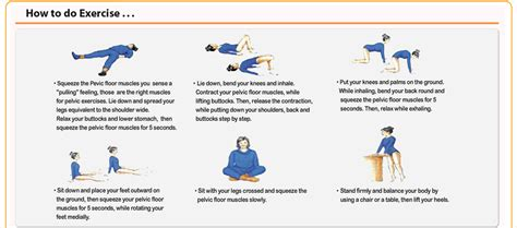 online exercises women bladder physical therapy picture 2