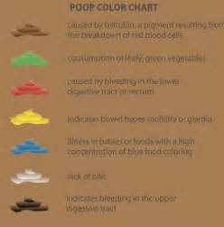 yellow very light brown feces picture 7