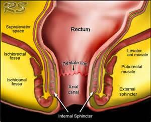 long penis of medicine shakti aushadhalaya bd picture 28