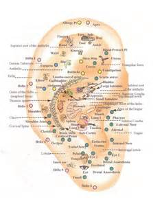 acupressure weight loss picture 2