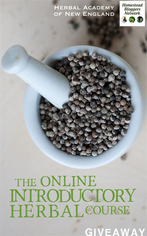 online herbal training picture 7