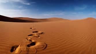 desert picture 1