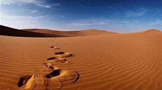desert picture 3