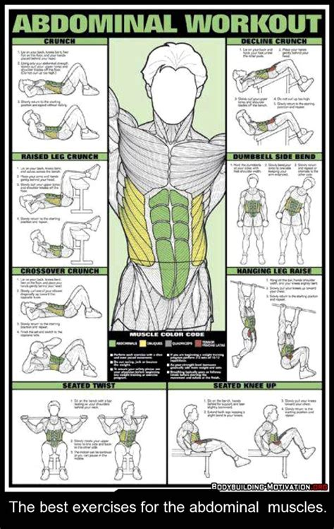 ab muscle exercise picture 10