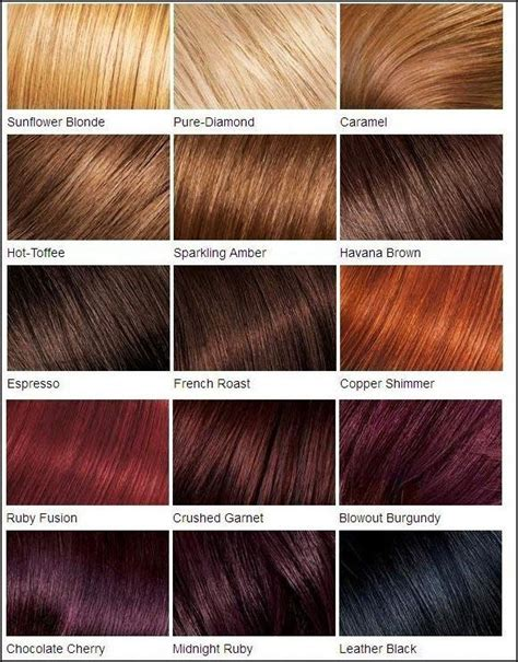 clairol hair chart picture 15