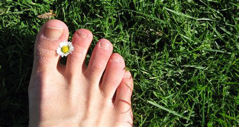 tea tree oil treatment for nail fungus picture 9