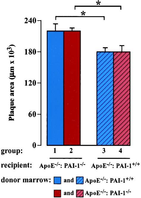 collagen vs cholesterol picture 10