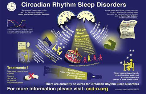 circadian sleep rhythm picture 10