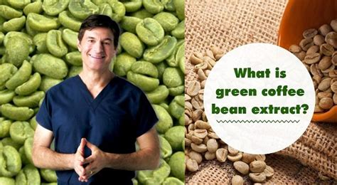 bombay green bean coffee extract picture 9