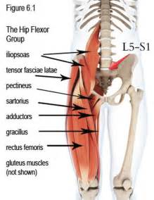 hip flexor muscle pull picture 3