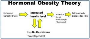 weight loss programs for insulin resistant people picture 3