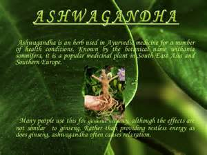 natural herb that give the same benefit as picture 5