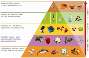 atkins diet food picture 18