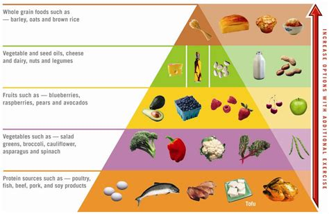 aitkins diet picture 17