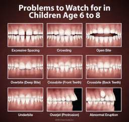 children teeth baby permanent when to pull picture 10