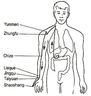 chinese medicine lung nodule picture 10