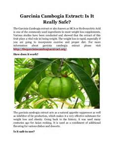 garcinia cambogia extract safe picture 1
