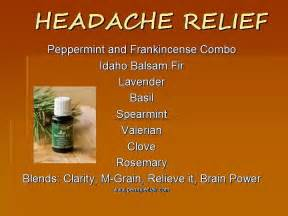 herbal remedies headache picture 3