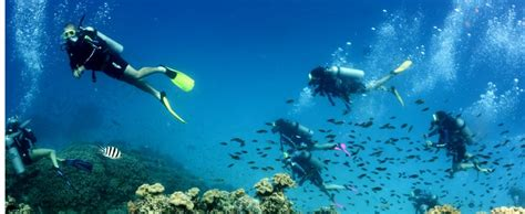 hawaii skin divers picture 2